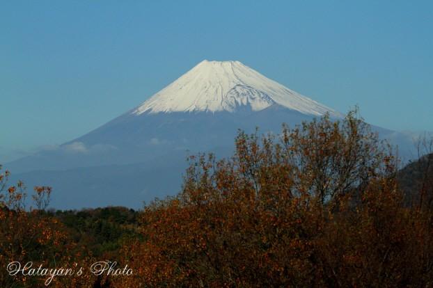 もみじ林富士見台から2a
