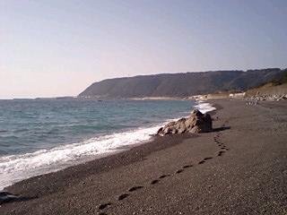 元の海岸100102_1357~0001