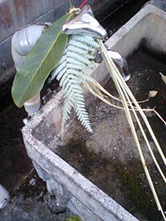 小川と水道しめ飾り091231_1620~0002