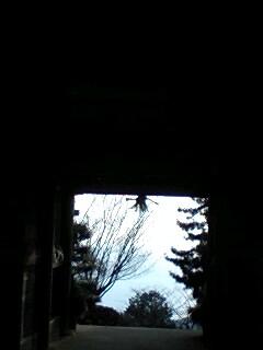神嶺神社山門から海100101_1503~0001