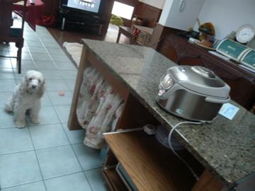 ぎん炊飯器