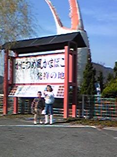 Image205.jpg