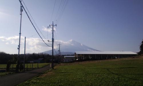 綺麗に見えた富士山
