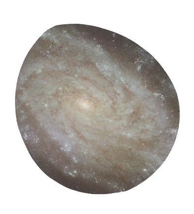 宇宙の卵_20100209