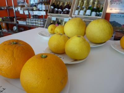 2013.2.21柑橘類1