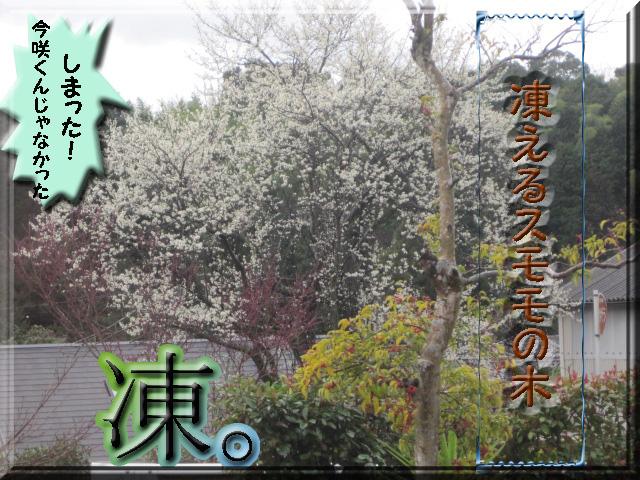 凍える_edited-1