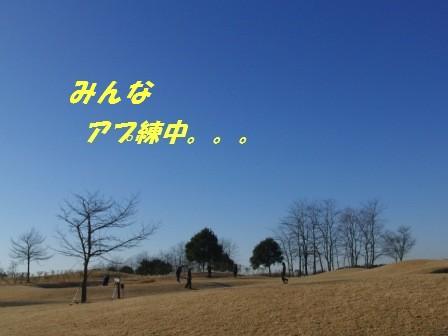 CIMG1429.jpg