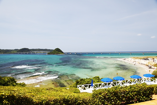 ブログ角島24