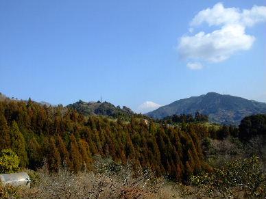2010_0220浜石0007