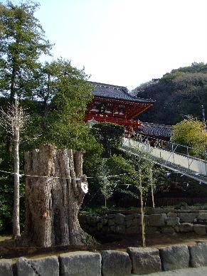 2010_0320鎌倉ヨコスカレー0033