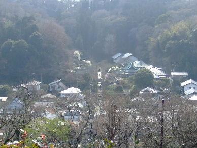 2010_0320鎌倉ヨコスカレー00712