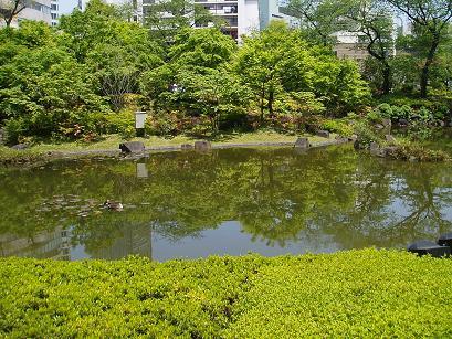 東京散歩 019