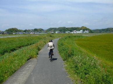 2010_0508満腹袋井0016