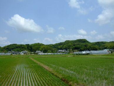 2010_0612御前崎ポタ0011