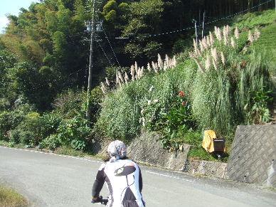 2010_1016おおりゅ~せい0007