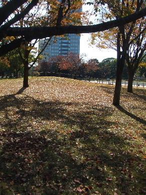 駿府の秋0011