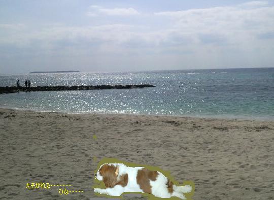 ひなとビーチ