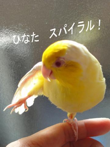2010_02_24_01.jpg