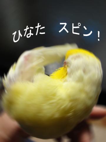 2010_02_24_02.jpg