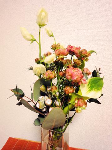 2010_02_26_01.jpg