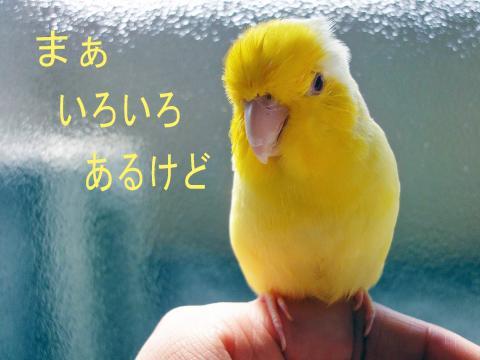 2010_02_28_03.jpg
