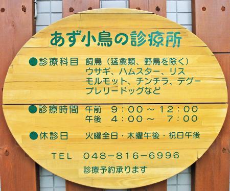 2010_04_02_01.jpg