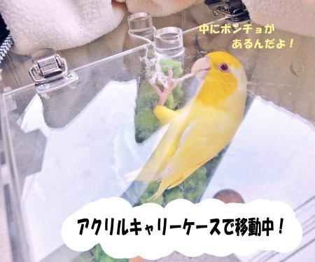 2010_04_02_03.jpg
