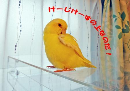 2010_04_09_06.jpg
