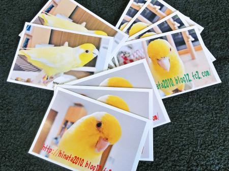 こんにちはカード各種。