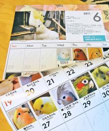 6月のカレンダー全景。