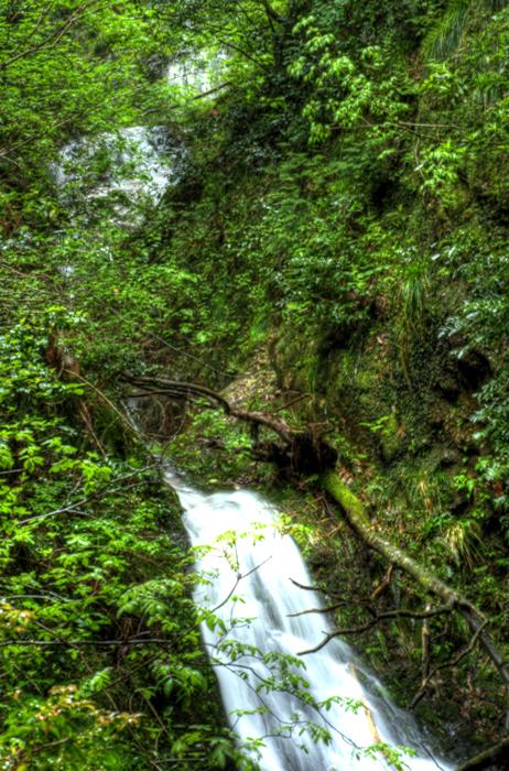 龍頭峡 b念仏の滝