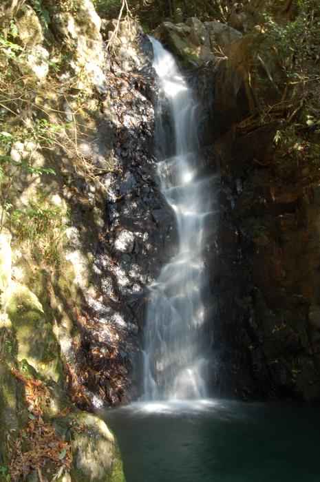 桜江 権現滝2