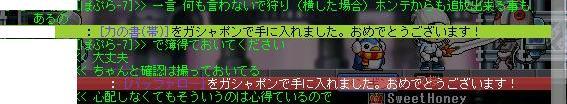 2010.1.15 面白い放置者(3)