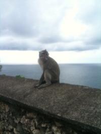 Bali+31_convert_20100214225540.jpeg