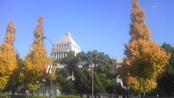 議事堂と銀杏の黄葉