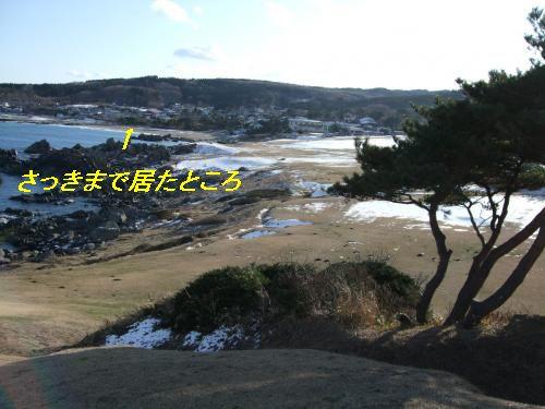 11_convert_20091219163416_20091219173905.jpg