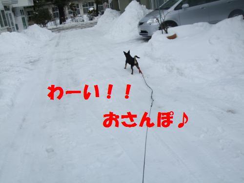 1_20100311140414.jpg