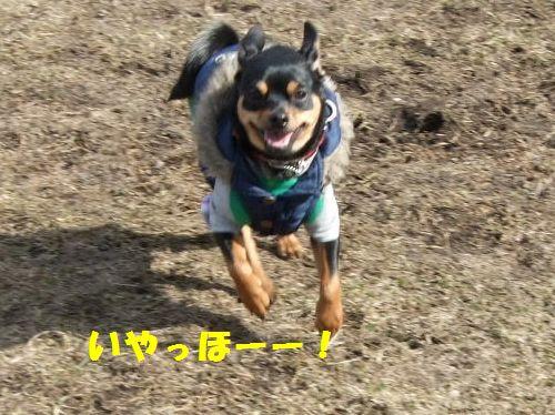 1_20100322174226.jpg