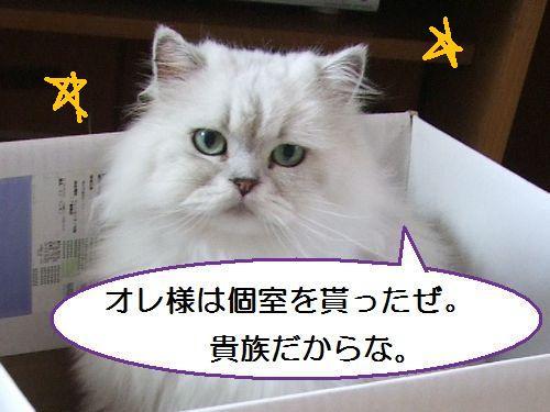 1_20100801105004.jpg