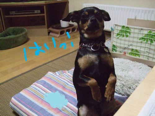 1_20100924214331.jpg