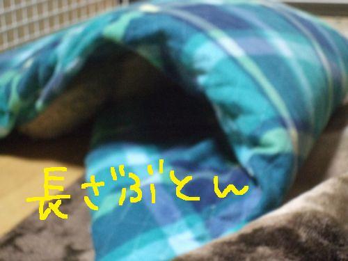 1_20101030181916.jpg