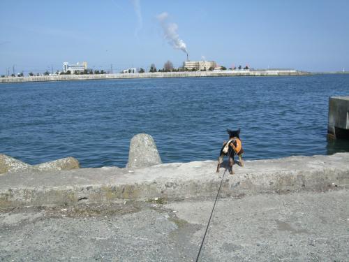 漁港000