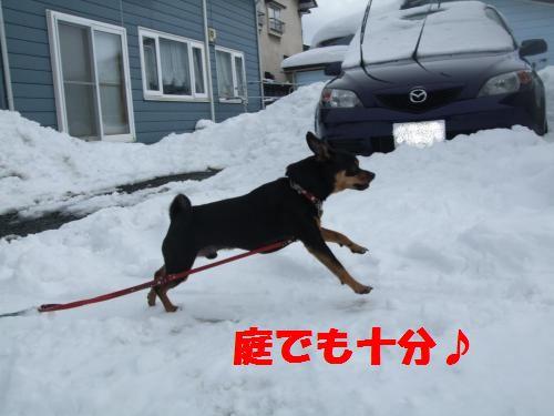 3_20100311140438.jpg
