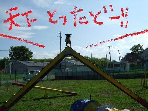 3_20100603173924.jpg