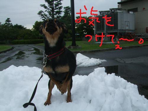 3_20100923205311.jpg