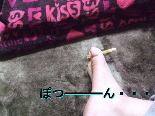 4_20101220210409.jpg