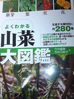 0409zukan.jpg