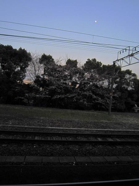 2012_04049.jpg