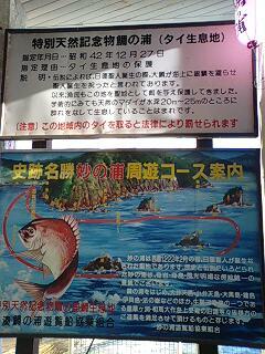 鯛の浦看板