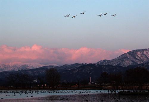 瓢湖20130305 032